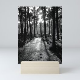 Path to the Light - Black & White Mini Art Print