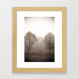 Early morning forest and creek Framed Art Print