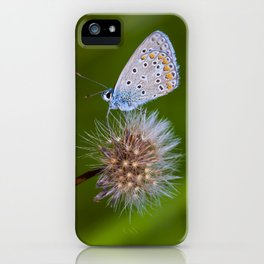 The butterfly and the delicate plant iPhone Case