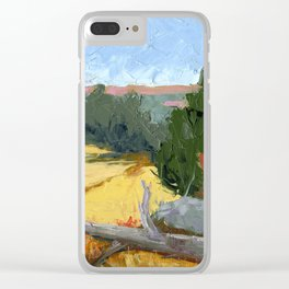 Where Falcons Fly Clear iPhone Case