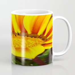 Orange and Rust Color Gazania Montezuma Macro  Coffee Mug