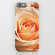 Romantic Rose Pink Rose iPhone 6s Slim Case