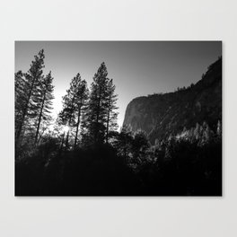 Sunlit Forest Trees and Cliffs in Yosemite Valley National Park (Black and White) Canvas Print