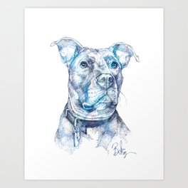 """Hank"" the Rescue Blue Nose Pitbull Staffordshire Terrier Art Print"