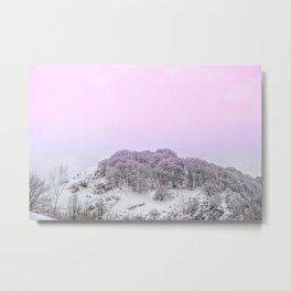 Pink Light on the trees in the forest Metal Print