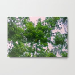 Singapore Botanical Garden 4 Metal Print