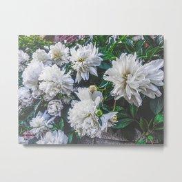 Springtime Beauty Metal Print