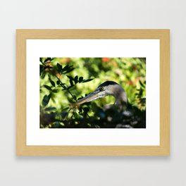 Hiding Deep In The Trees Framed Art Print