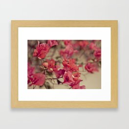 Red Flowers #2 Framed Art Print