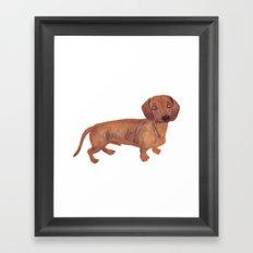 Dachshund Sausage dog Framed Art Print