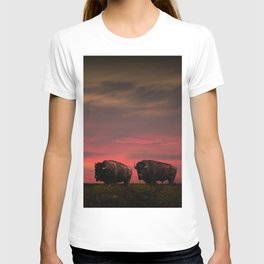 Two American Buffalo Bison at Sunset T-shirt