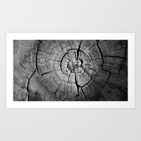 tree rings Art Prints featuring Rings by Jacob Haynes