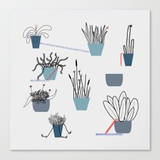 TIME TO PLANT Canvas Print