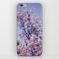 She Was an Introvert with a Beautiful Universe Inside iPhone Skin