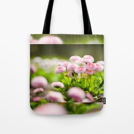 Bellis perennis pomponette called daisy Tote Bag