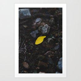 A Little Yellow Art Print