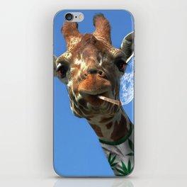 giraffe 4 iPhone Skin