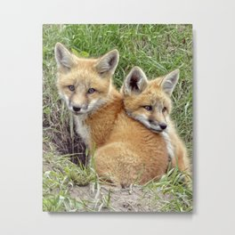 Fox Twins Metal Print