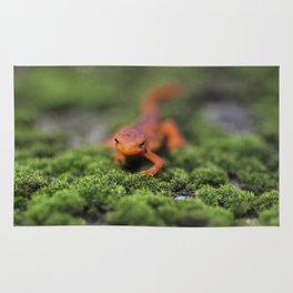 Coming For You - Orange Salamander Rug