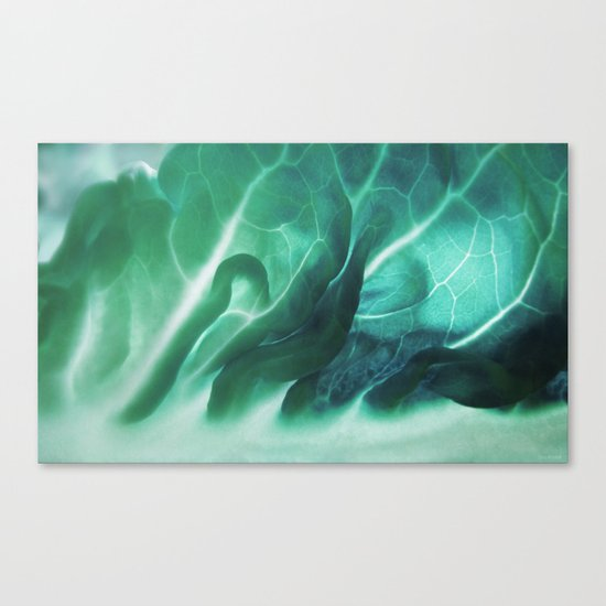 Aqua Plant (Art Of Food) Canvas Print