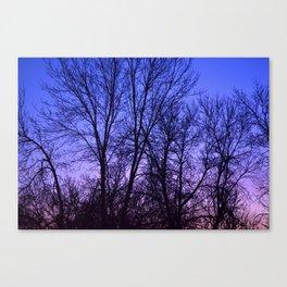 sunrise 03/09/13 Canvas Print