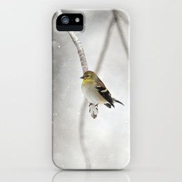 Goldfinch Clinging to an Icy Branch iPhone Case