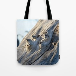 Trunk Tote Bag