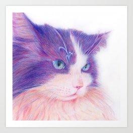 miwa cat 2 ~fred~ Art Print