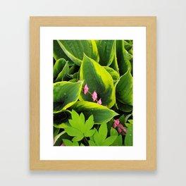 Looking down on petals Framed Art Print