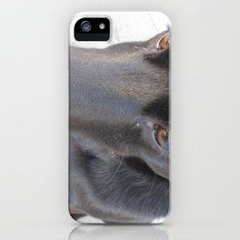 Black Dog iPhone Case