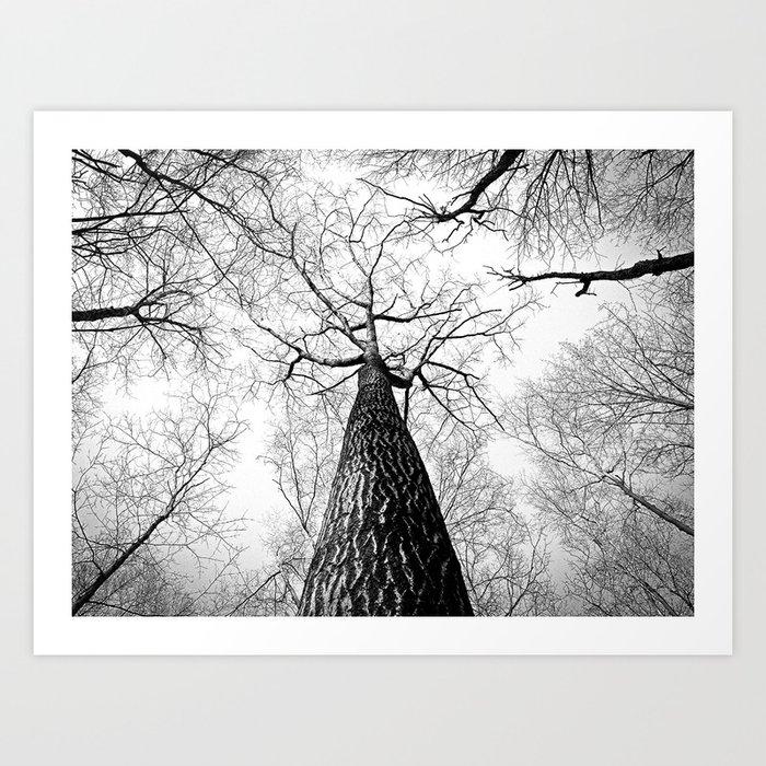 Under a falling sky Art Print
