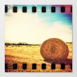 hay bale in a wheat field Canvas Print