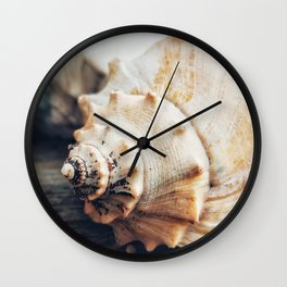 She Sells Seashells Down by the Seashore Wall Clock