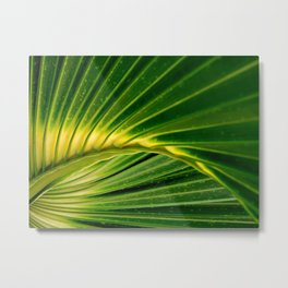 The green fan Metal Print