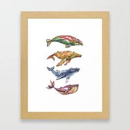 The Whales Framed Art Print