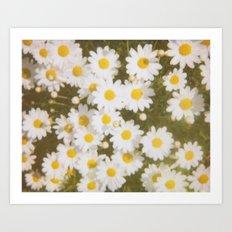 Daisies Retro Polaroid Print Art Print