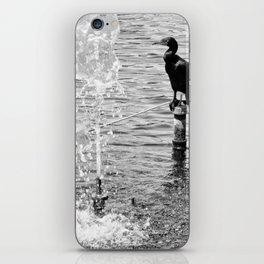 Bird at The Lake iPhone Skin