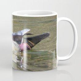 Beautiful Wood Duck at Green Valley Inn Coffee Mug