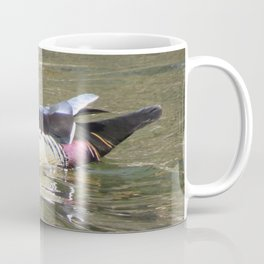 Beautiful Wood Duck at Green Valley Inn Coffee Mug