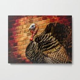 Wild Turkey Metal Print