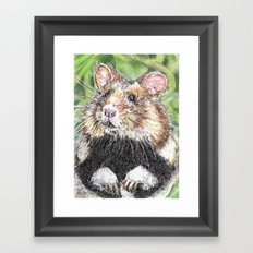 Did Someone Say Nuts Framed Art Print