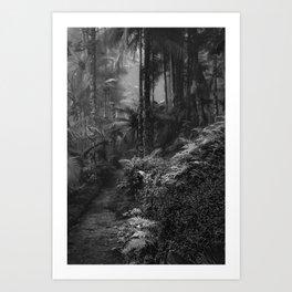 The Mantiqueira Ridge nº 15 Art Print