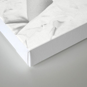 Snow White - White Shirt Canvas Print