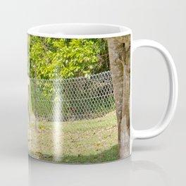 Mischievous miniature horse foal Coffee Mug