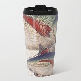 Fish Classic Designs 5 Travel Mug