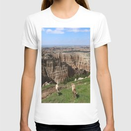 Bighorn Sheep At Sage Creek T-shirt