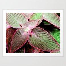 Tropical Leaves VI Art Print
