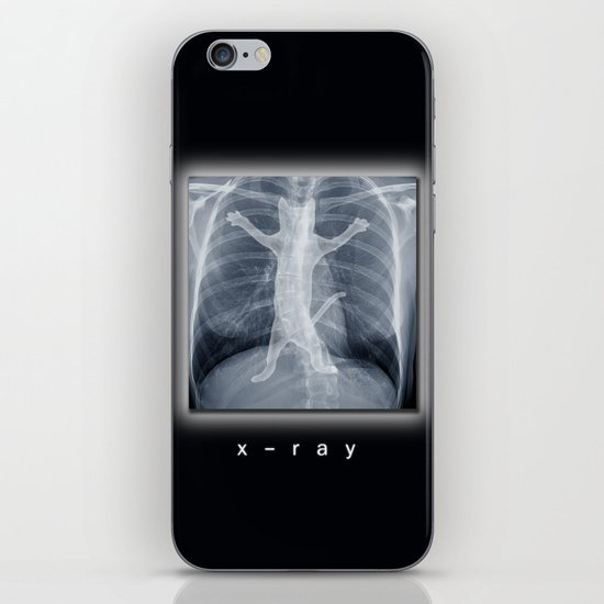 x-ray iPhone & iPod Skin