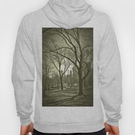 spring in central park Hoody