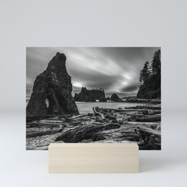 Ruby Beach Mini Art Print